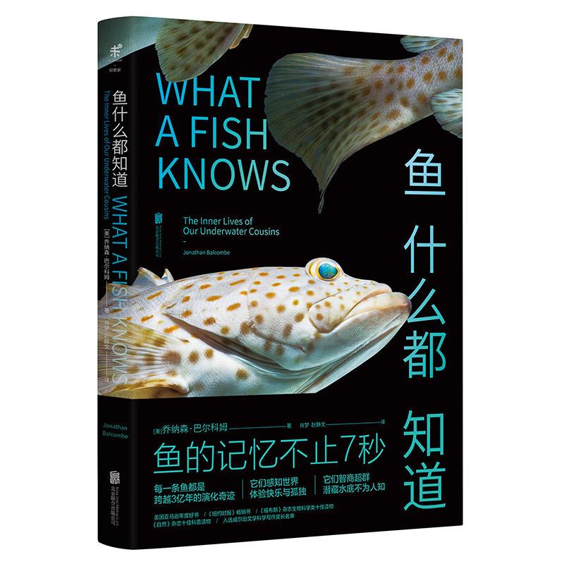 鱼什么都知道(pdf+txt+epub+azw3+mobi电子书在线阅读下载)