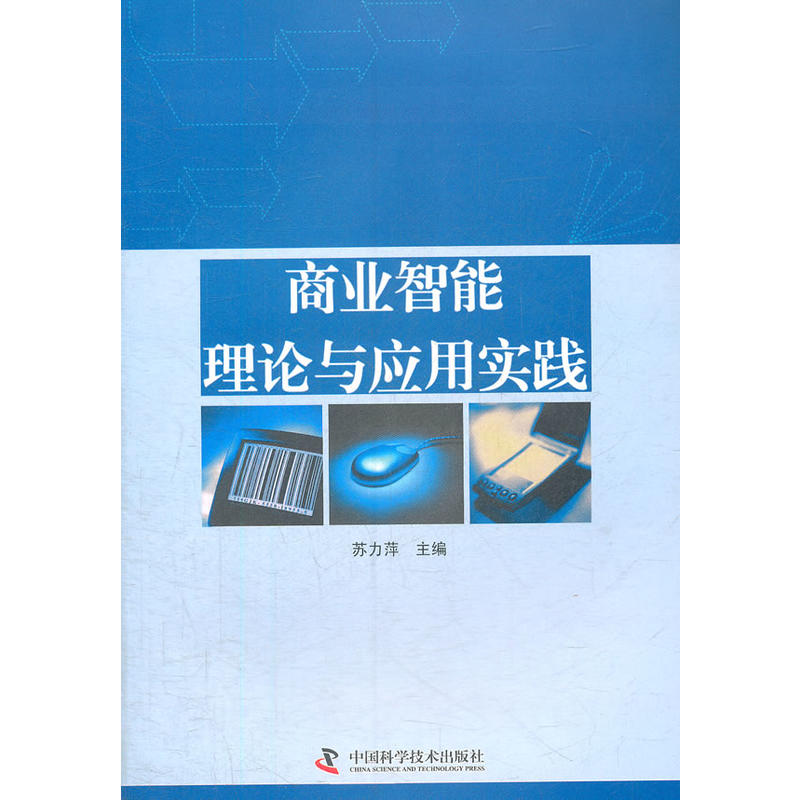 商业智能理论与应用实践(pdf+txt+epub+azw3+mobi电子书在线阅读下载)