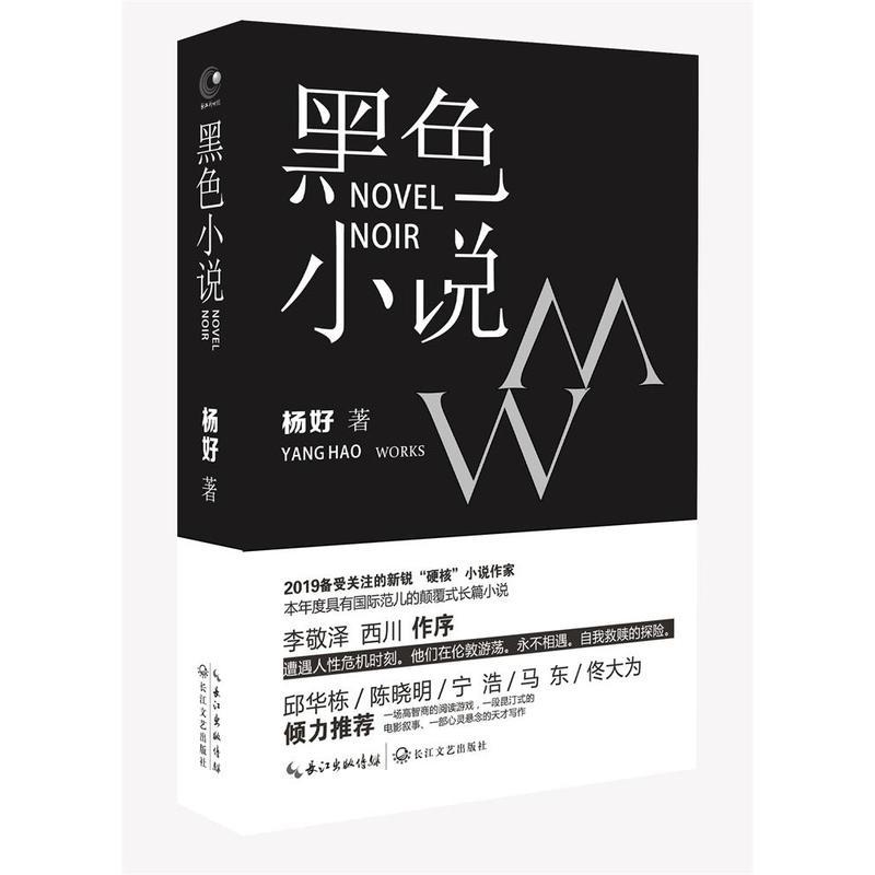 黑色小说(pdf+txt+epub+azw3+mobi电子书在线阅读下载)
