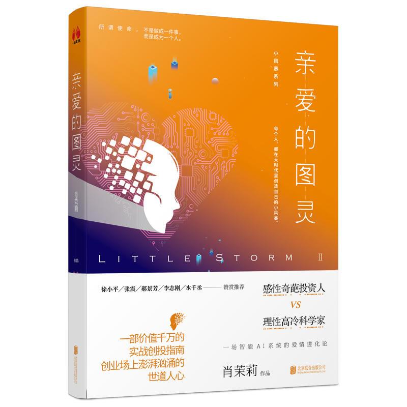小风暴Ⅱ:亲爱的图灵(pdf+txt+epub+azw3+mobi电子书在线阅读下载)