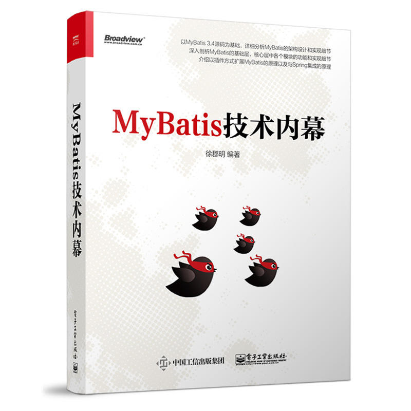 MyBatis技术内幕(pdf+txt+epub+azw3+mobi电子书在线阅读下载)
